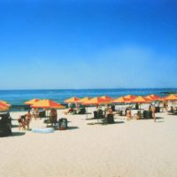 №8384 Летний отдых Черное море Железный порт б/о Лелека