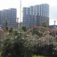 №12236 Апартаменты в Грузии. Недвижимость в Батуми.