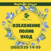 №14523 Уход за садом, озеленение, услуги садовника, посадка и обрезка деревьев