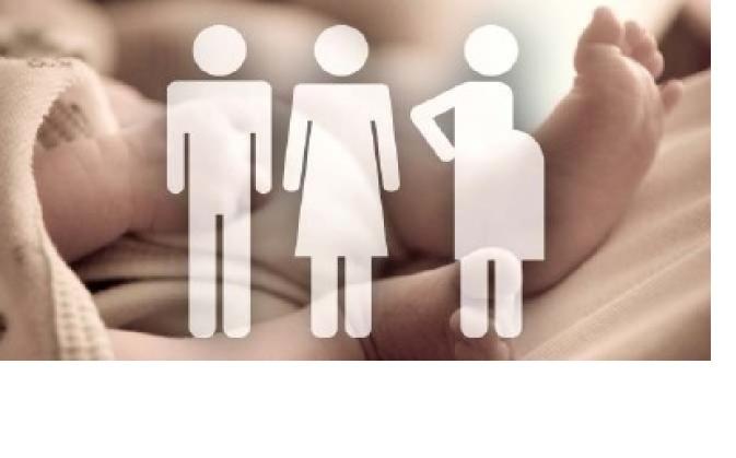 №15574 Сотрудничество для доноров и суррогатных мам