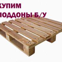 №16943 Купим б/у поддоны дорого  Новомосковск