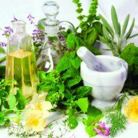 №17558 Народное лечение травами