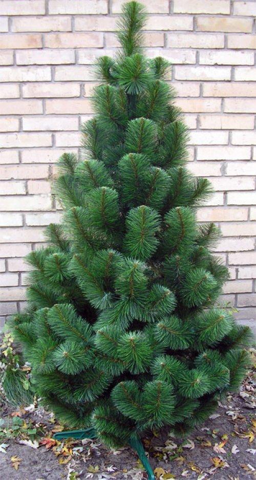 №17666 Сосна искусственная новогодняя зеленая