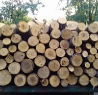 №7125 Купить дрова в Николаеве, не дорого с доставкой