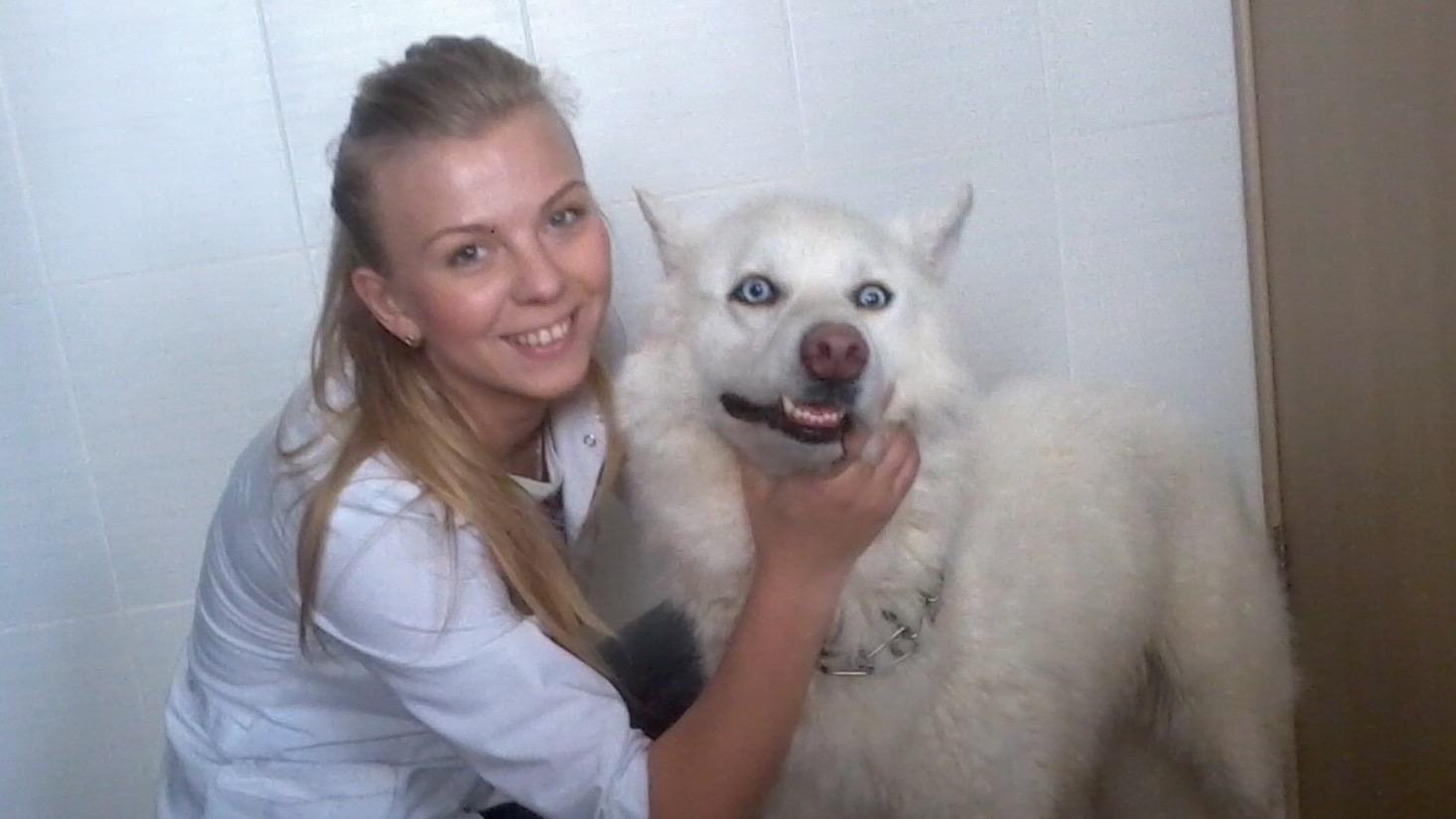 №9479 Ветеринар на дом в Харькове