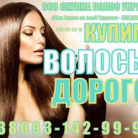 №11038 Продать Волосы Дорого. Покупаем волосы.
