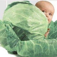 №10703 Потрібні донори яйцеклітин та сурогатні мами в клініку репродуктивної медицини.