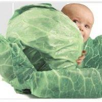 №10865 Клініка репродуктивної медицини запрошує сурогатних мам та донорів яйцеклітин