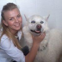 №10691 Ветеринар на дом в Харькове