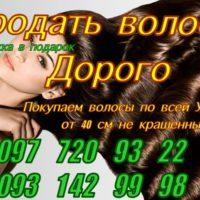 Продать куплю волосы дорого Днепр Киев Харьков Одесса
