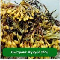№18639 Экстракт Фукуса 25%, 1 кг