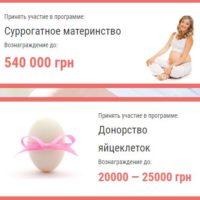 Информация для доноров яйцеклеток