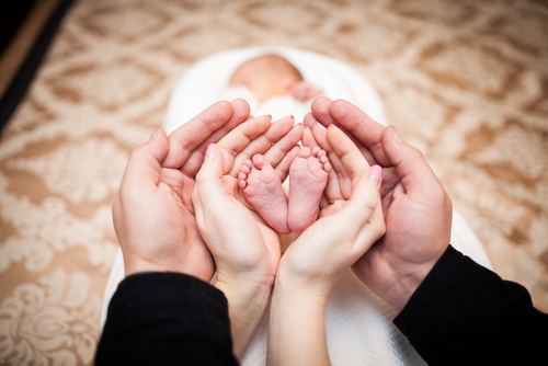 №18870 Яйцеклетка для суррогатного материнства