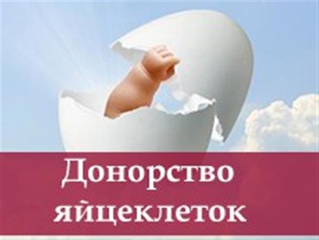 №19077 Сотрудничество для доноров и суррогатных мам