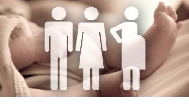 №19792 Сотрудничество для доноров и суррогатных мам