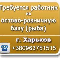 №21857 Требуется работник на оптово-розничную базу (рыба)