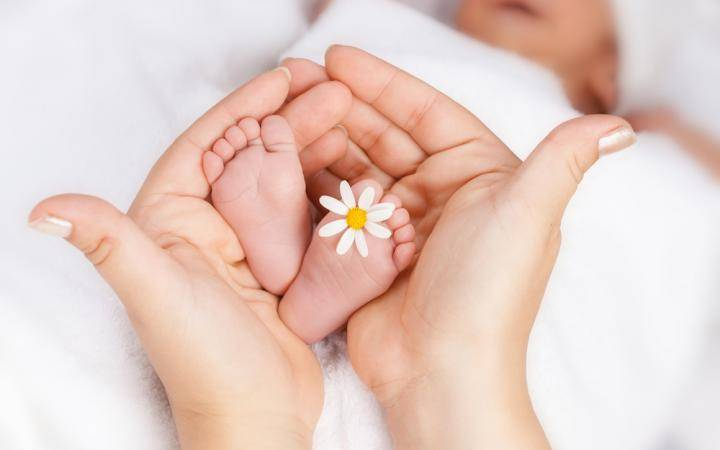 №23452 Потрібна інформація (Сурогатне материнство)