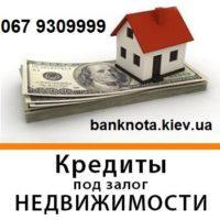 №24331 Частный инвестор выдаст кредит